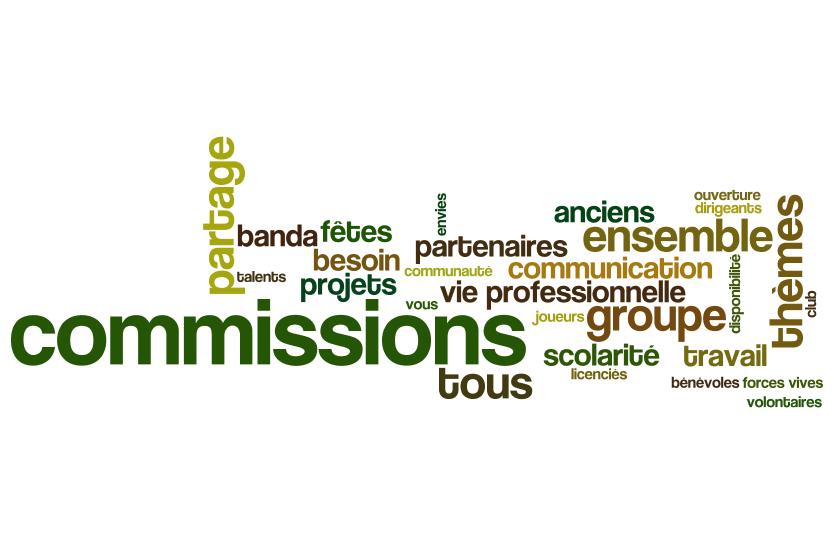 Les commissions et groupes de travail du Rugby Club Suresnois